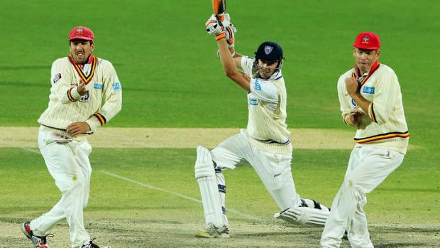 Josh Hazlewood of the Blues bats during day four.