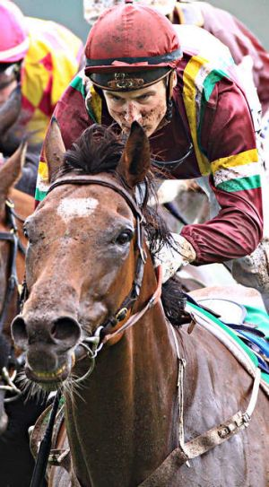 Jacquinot Bay is backing up after a fourth at Rosehill last Saturday.