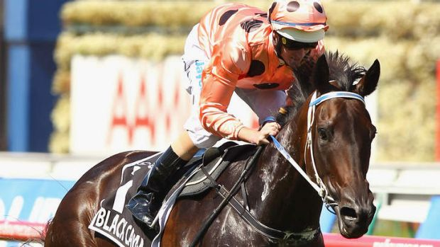 Gem: Black Caviar winning the 2011 Newmarket.