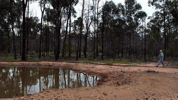 Coal seam gas: One of several operation sites in the Pilliga Forest.