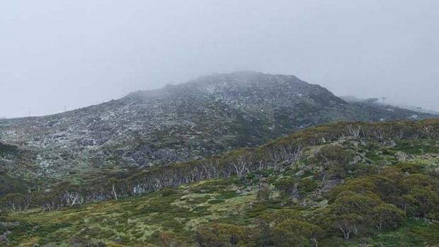 Move to open up national parks: Surrounding parkland at Perisher Valley.