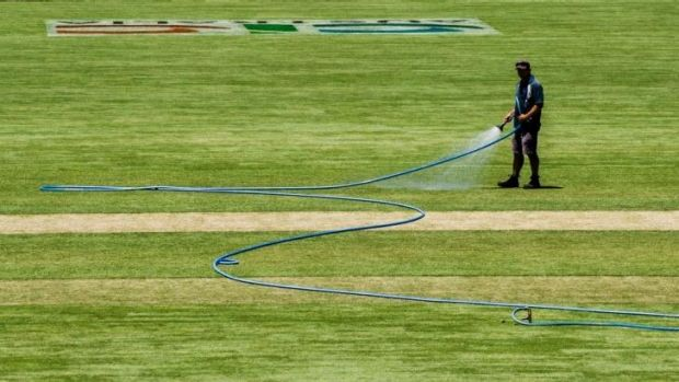 Manuka curator Brad Van Dam says the pitch will offer a bit of everything for the Sheffield Shield final.