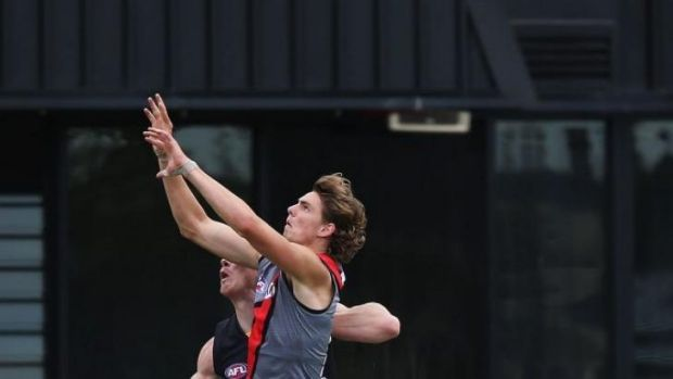 Joe Daniher will fly high in the ruck as well as in the forward line.