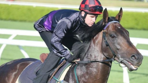 Fiorente will take his place in Saturday's field after an unbeaten two-start Melbourne autumn campaign.