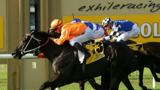 Winning double: James McDonald scores on Mecir for the Hawkes brothers in the Newcastle Newmarket.