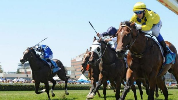 Rubicked: Jabali goes down to Rubick in the Blue Diamond Prelude in Melbourne last month.