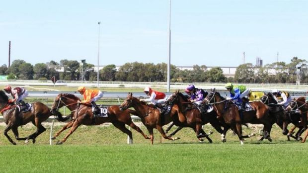 Entirely too good: Corey Brown and Entirely Platinum (No.10) on the way victory in the Sky High Stakes at Rosehill.