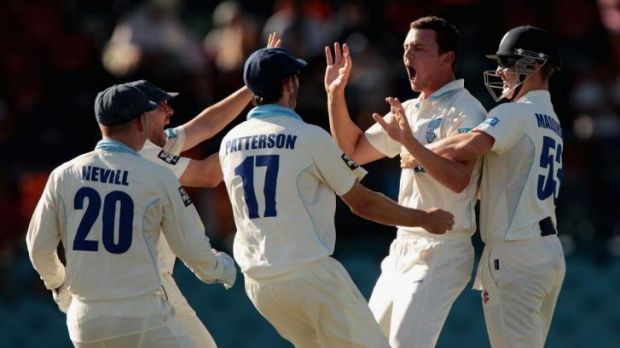 Josh Hazlewood, second from right, celebrates one of his three wickets.