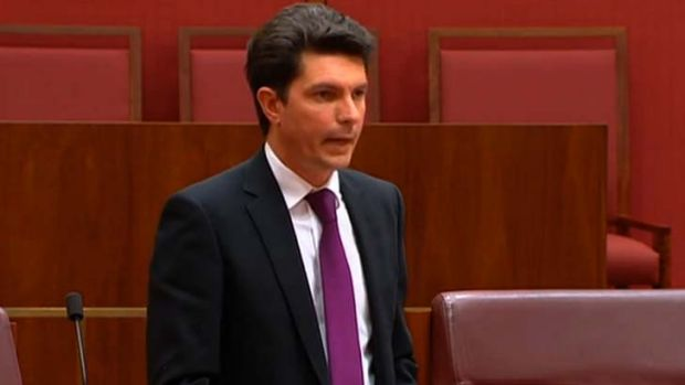 Scott Ludlam: fighting for his survival.