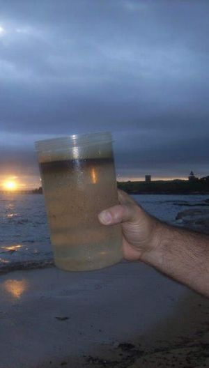 'Oily water': The spill from Caltex's Kurnell Refinery into Botany Bay.