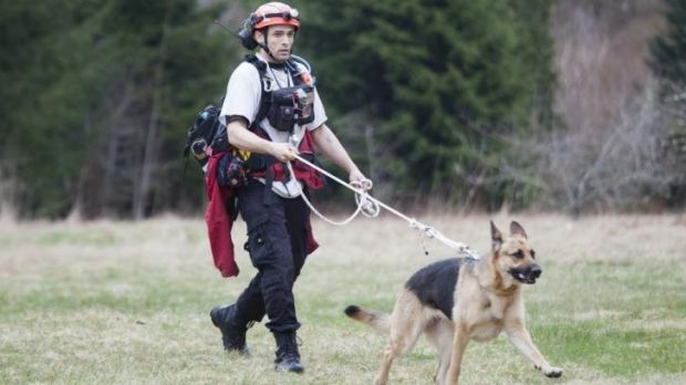A search and rescue worker and canine look for mudslide survivors near Oso.