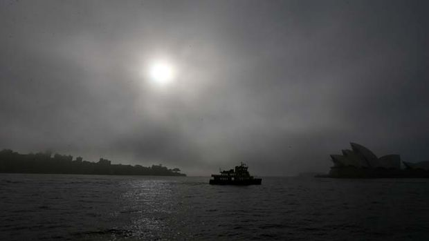 Fog on the harbour forced the cancellation of at least three ferry services.
