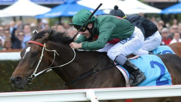 Win and bear it: Ryan Maloney finds it hard to hide his delight at taking last year's Zipping Classic aboard Sertorius.