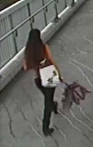 CCTV footage of Sophie Collombet captured as she made her way to university.