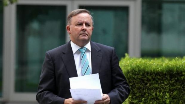 Labor frontbencher Anthony Albanese has defended one of the party's WA Senate candidates, Joe Bullock over comments made ...
