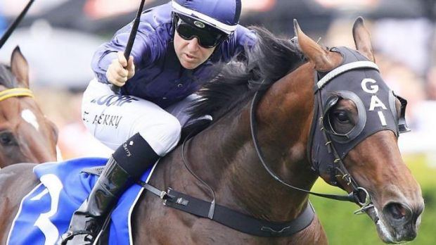 Undecided: Tommy Berry will be given until the last minute to decide whether to ride Valentia in eh Golden Slipper.