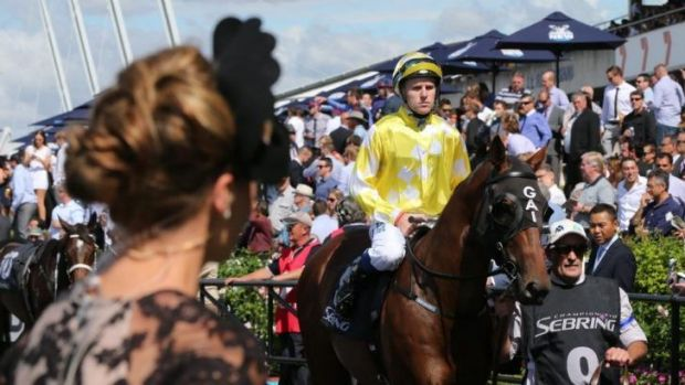 Emotional meeting: Tommy Berry rides Bull Point to the start of the Sebring Stakes at Rosehill on Saturday.