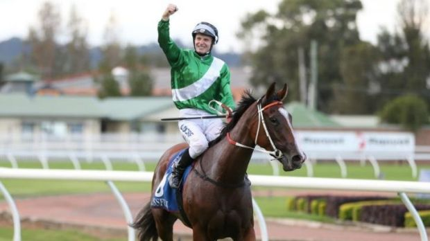 Handy return: Golden Slipper winner Mossfun cost just $85,000 at last year's Inglis Easter sales.