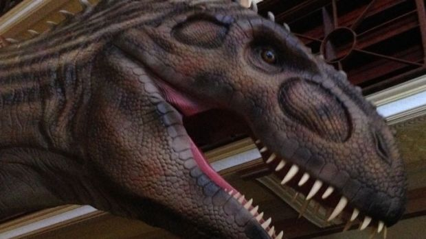 Interactive dinosaurs on display at museum.