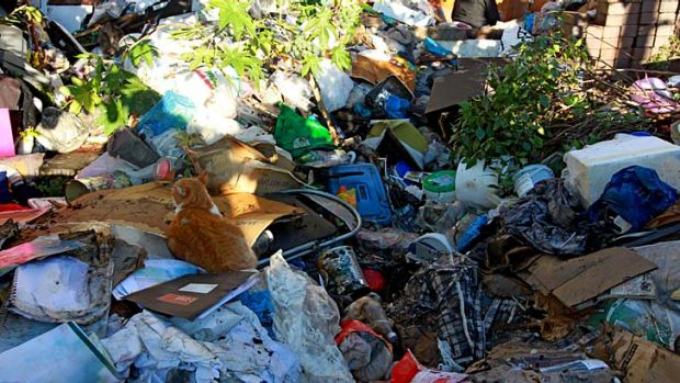 Mountains of rubbish: The home of Mary Bobolas is being cleaned out.