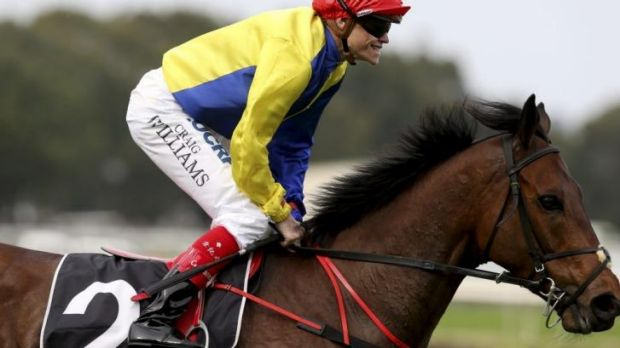 Horse and Ryder: Craig Williams returns to scale on Gordon Lord Byron after winning the George Ryder at Rosehill last month.