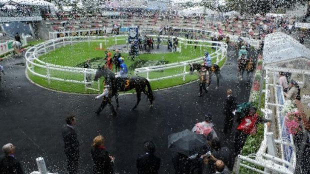 Horses parade in the mounting yard in wet and windy conditions during day one of The Championships at Royal Randwick