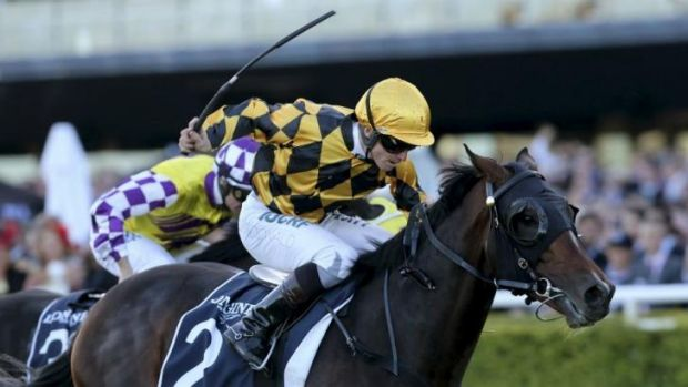 All over: It's A Dundeel, with James McDonald on board, wins Sydney's richest race, the $4 million Queen Elizabeth Stakes.