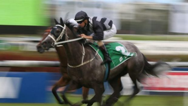 Honouring a hero: Weary scores for Hugh Bowman at Rosehill earlier this month.