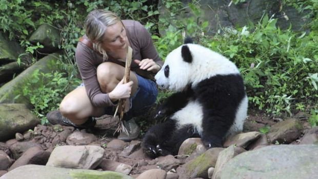 Amber Clayton as Marnie Tyler, and panda in <i>Sneezing Baby Panda: The Movie</i>.