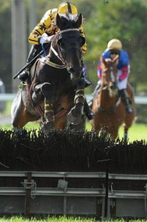 Gotta Take Care clears the last hurdle on the way to winning the Galleywood Hurdle.