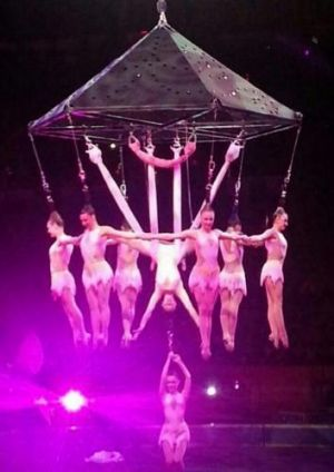Performers hang form their hair while performing the stunt that went wrong.