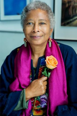 Powerful polemicist: Alice Walker challenges readers to end literary segregation.
