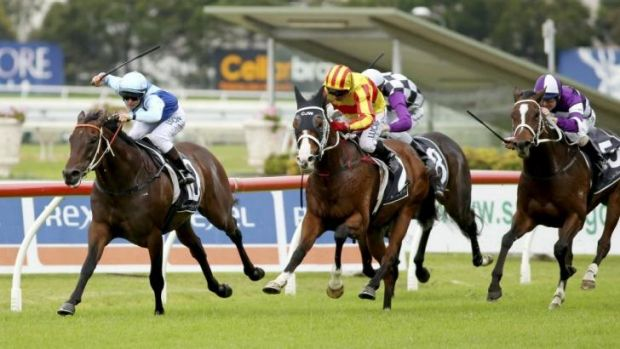 Marshall law: Taylor Marshall boots home Zephyron to win the Lord Mayors Cup at Rosehill.