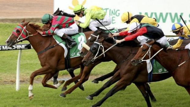 To the four: Taylor Marshall rides Forster to victory for his fourth win at Rosehill on Saturday.