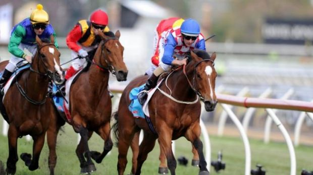 Streaming ahead: Streama will chase a fourth group 1 win in tomorrow's Doomben Cup.