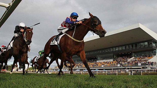 Class act: Streama, ridden by Blake Shinn, races away with the Doomben Cup.