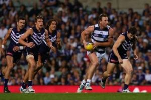 The Cats could be without Steve Johnson.