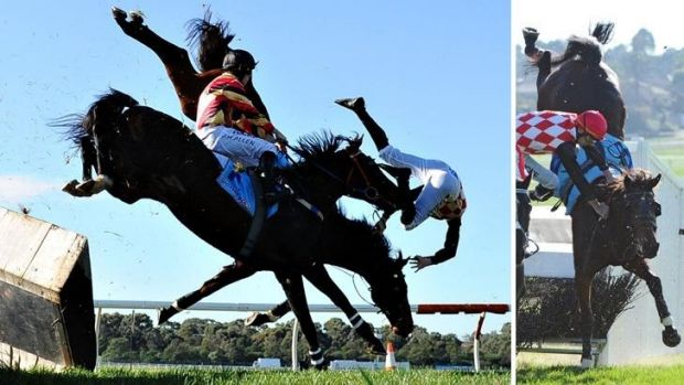 These two images show Show Dancer crashing through the steeple jump at Sandown.