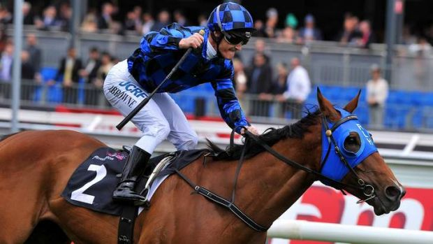 Compact and tough: Doomben 10,000 hopeful Buffering.