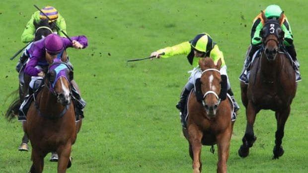 Upset victory: Jason Collett wins the third at Randwick on Abbasso (centre, lime green) at Randwick on Saturday.