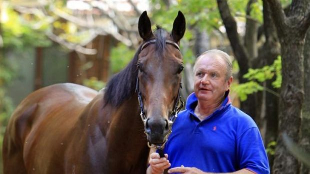 Guy Walter with Zanbagh at his Warwick Farm stables earlier this year.