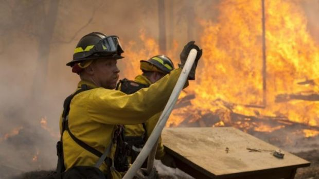 Firefighters face the inferno that has engulfed 650 square kilometres of forest.