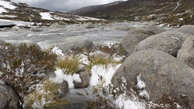 A bushwalking couple are missing in the Kosciuszko National Park.