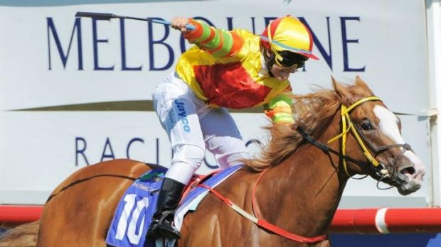 Handy return: Miracles of Life sold for $900,000 at the Gold Coast sale.