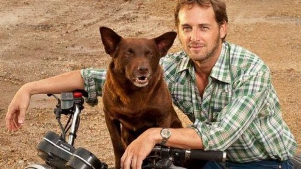 Josh Lucas starred in the Australian hit film <i>Red Dog</i>.