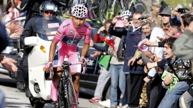 Crowd favourite: Colombian Nairo Quintana powers on during stage 19 of the Giro d'Italia.