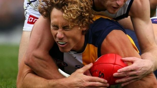 """West Coast's Matt Priddis says the lack of Eagles effort against North Melbourne was """"inexcusable""""."""