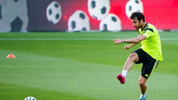 Cesc Fabregas is hoping to have his future decided before the World Cup begins.