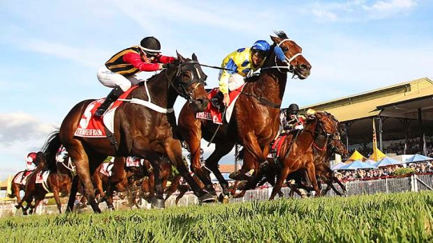 Just got there: River Lad (right) lunges to beat Temple Of Boom in the Stradbroke Handicap.