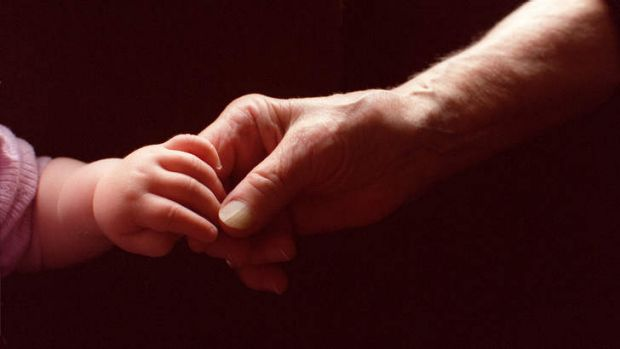 Grandparents who care full-time for their grandchildren need help to access services, says the Human Rights Commission.